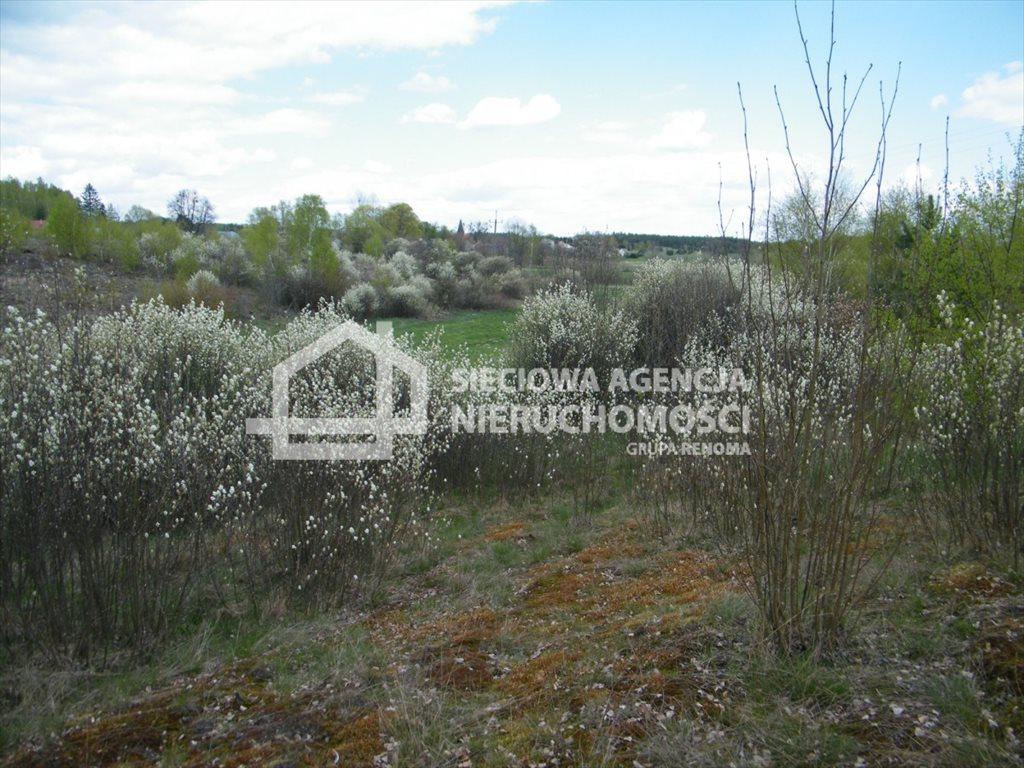 Działka leśna na sprzedaż Huta Kalna  20250m2 Foto 8