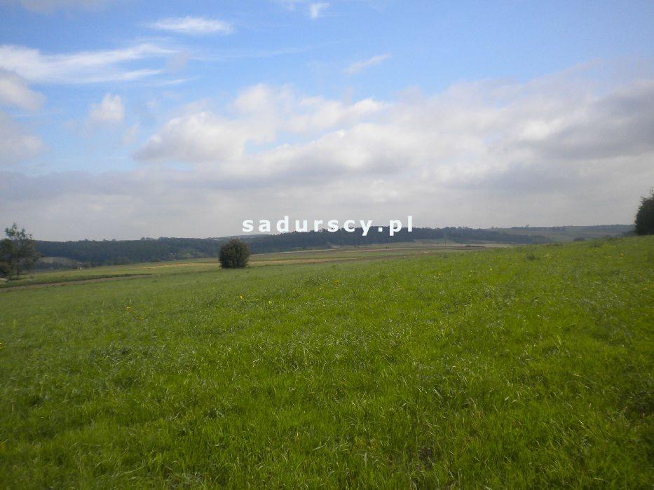 Działka rolna na sprzedaż Gołyszyn  28520m2 Foto 7