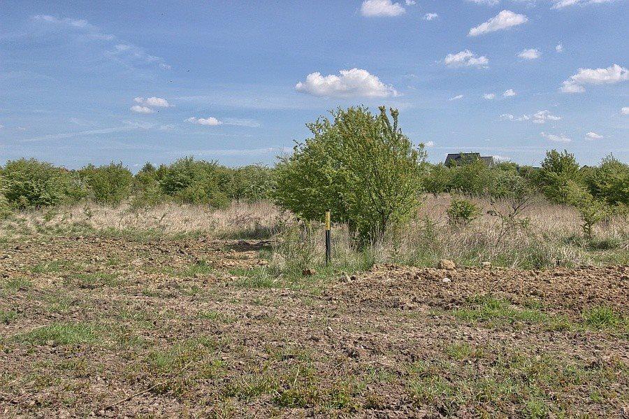 Działka rolna na sprzedaż Mierzyn, ZEUSA  866m2 Foto 1