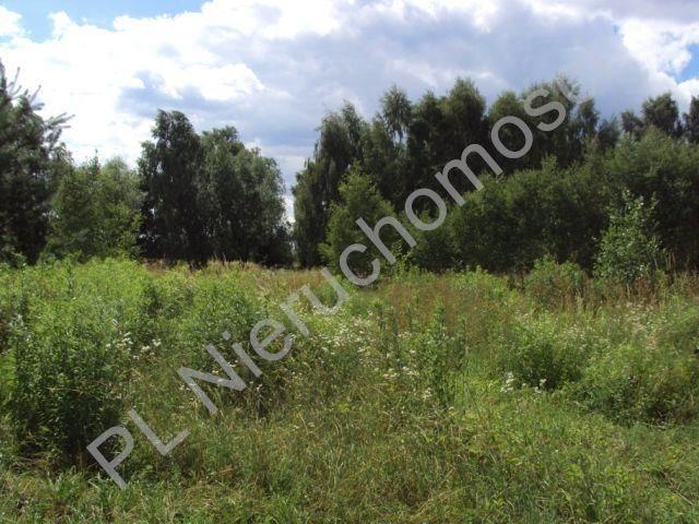Działka rolna na sprzedaż Holendry Baranowskie  4000m2 Foto 9