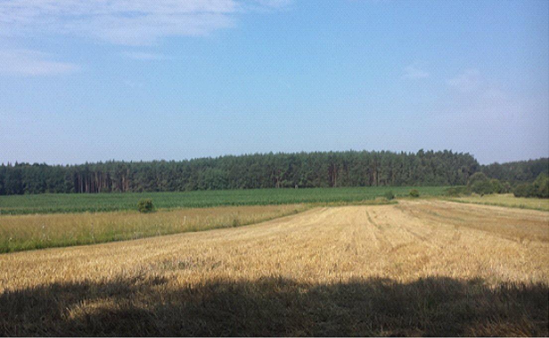 Działka rolna na sprzedaż Sławowice  399107m2 Foto 1
