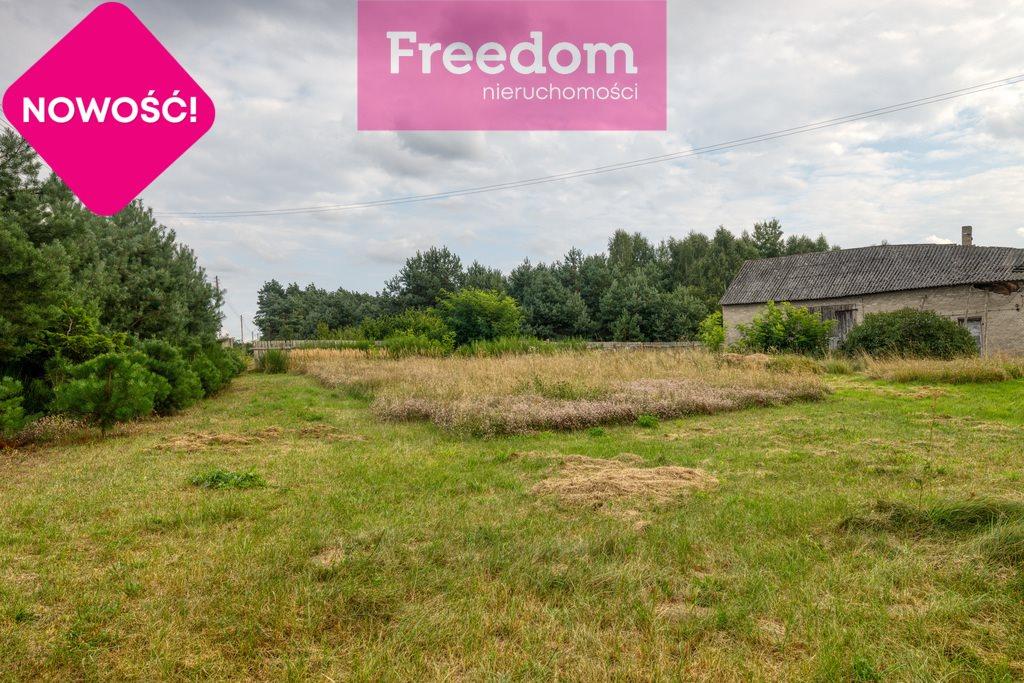 Działka rolna na sprzedaż Ożegów, Piaskowa  30026m2 Foto 3