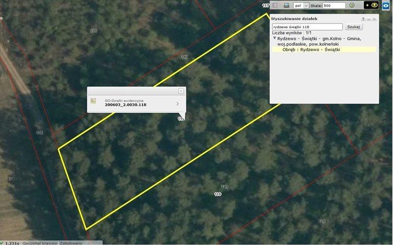 Działka leśna na sprzedaż Rydzewo-Świątki  3600m2 Foto 2