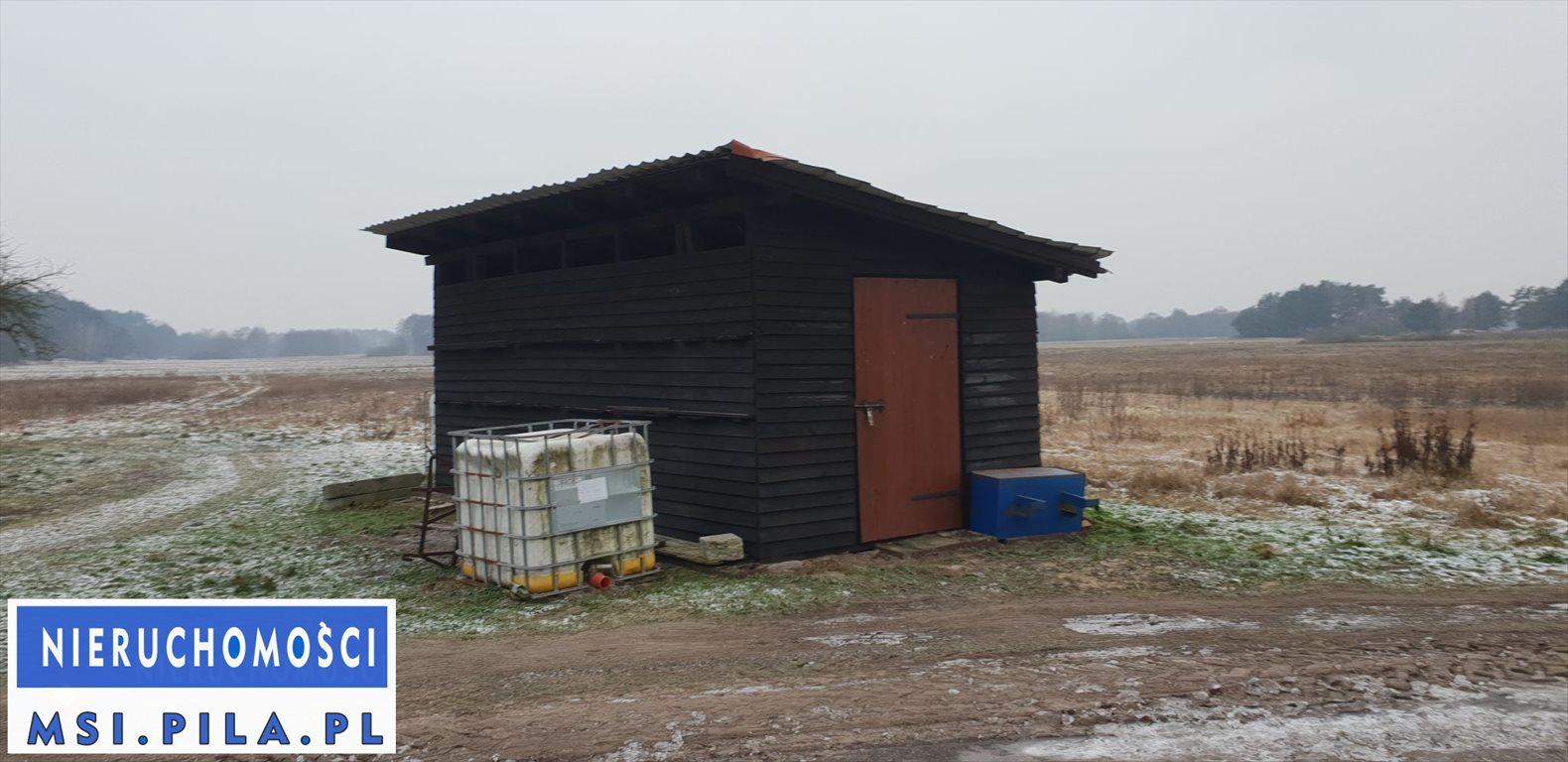 Dom na sprzedaż Czarnków  288m2 Foto 6