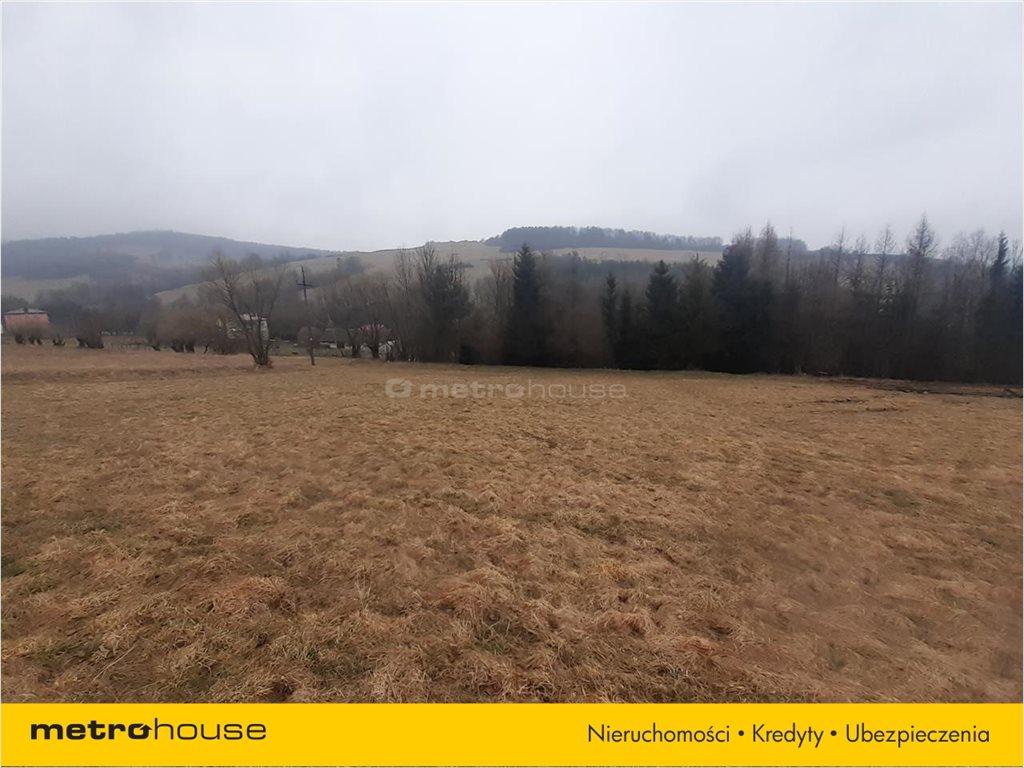 Działka rolna na sprzedaż Rzepedź, Komańcza  9300m2 Foto 8