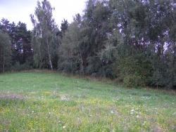 Działka rolna na sprzedaż Rogale  58200m2 Foto 3