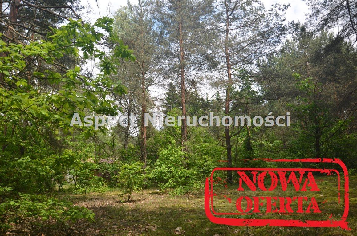 Działka rekreacyjna na sprzedaż Łochów, Jerzyska  1400m2 Foto 3