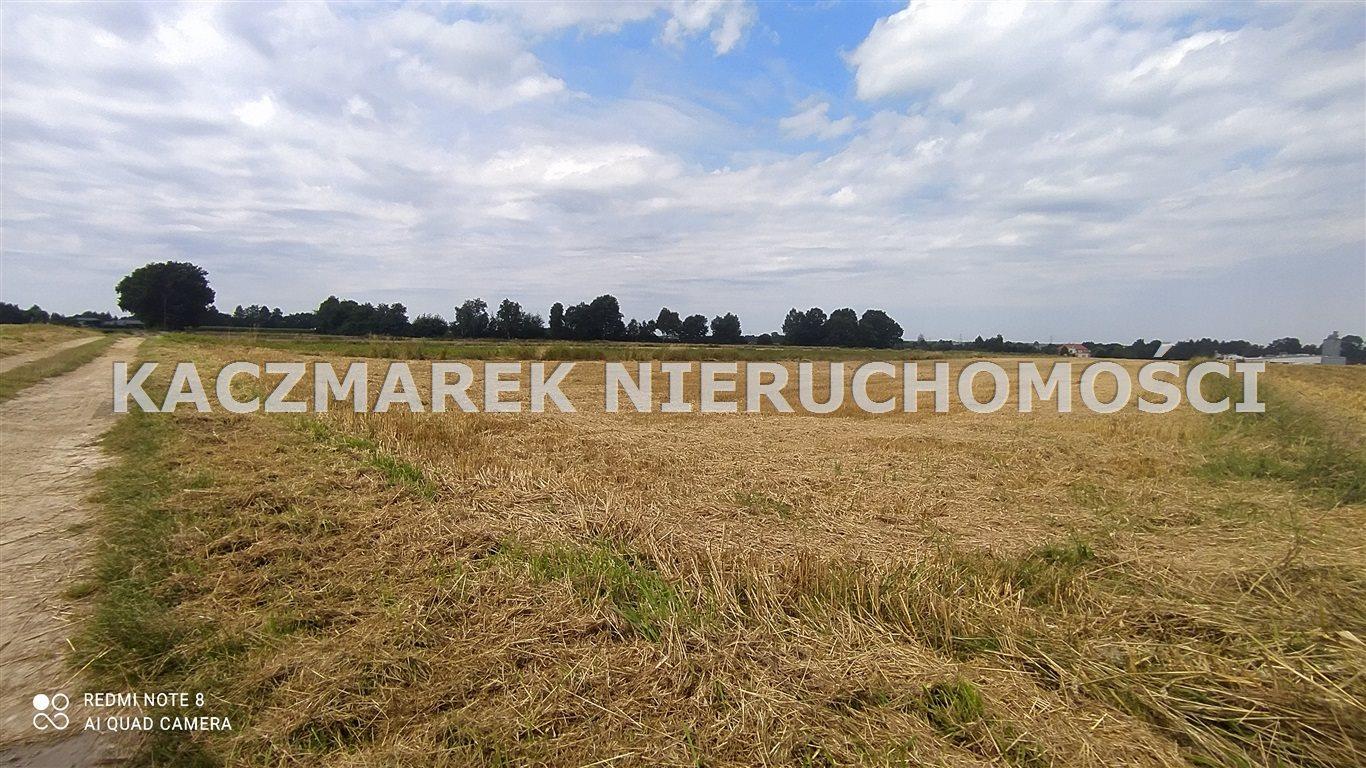 Działka rolna pod dzierżawę Ćwiklice  22060m2 Foto 2