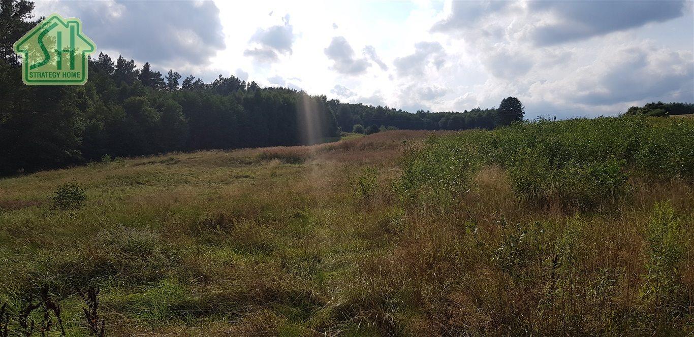 Działka rolna na sprzedaż Nienadowa  10334m2 Foto 1