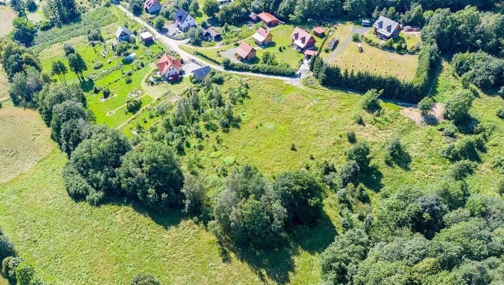 Działka budowlana na sprzedaż Wojcieszyce  5005m2 Foto 7