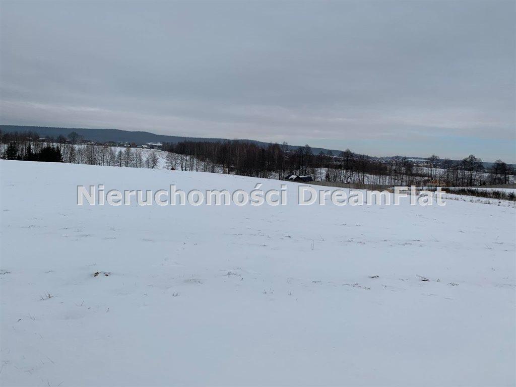 Działka budowlana na sprzedaż Lechów  9000m2 Foto 3