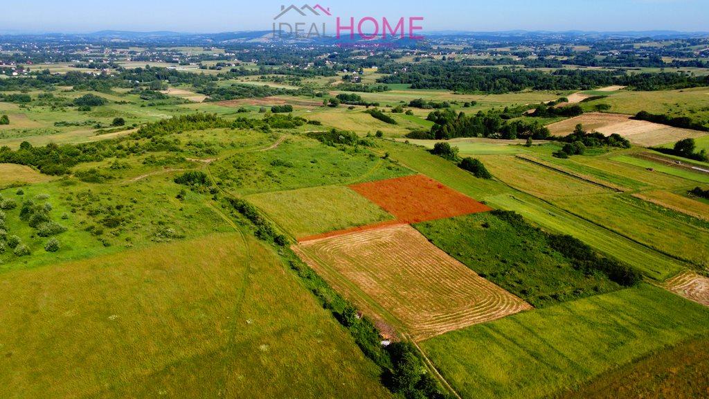 Działka rolna na sprzedaż Lipinki  13788m2 Foto 3