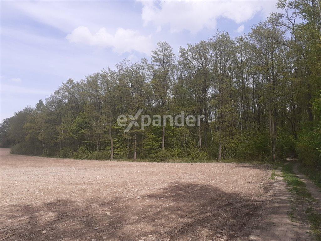 Działka leśna na sprzedaż Jaskrów  2300m2 Foto 1