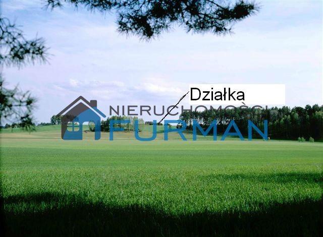 Działka budowlana na sprzedaż Dobrzyca  1641m2 Foto 5