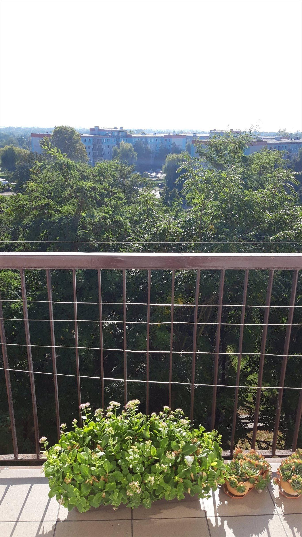 Mieszkanie trzypokojowe na sprzedaż Wrocław, Krzyki, Gaj, Krynicka 70  62m2 Foto 15