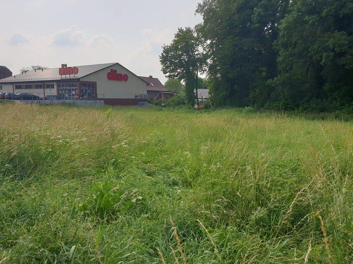 Działka rolna pod dzierżawę Chojna  2013m2 Foto 3