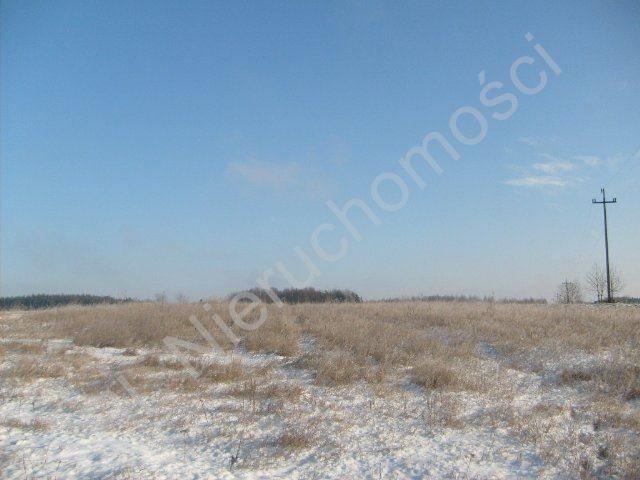 Działka rolna na sprzedaż Mszczonów  9700m2 Foto 9