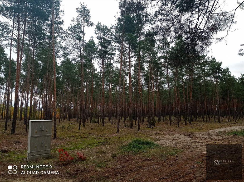 Działka leśna na sprzedaż Leśnik  1980m2 Foto 5