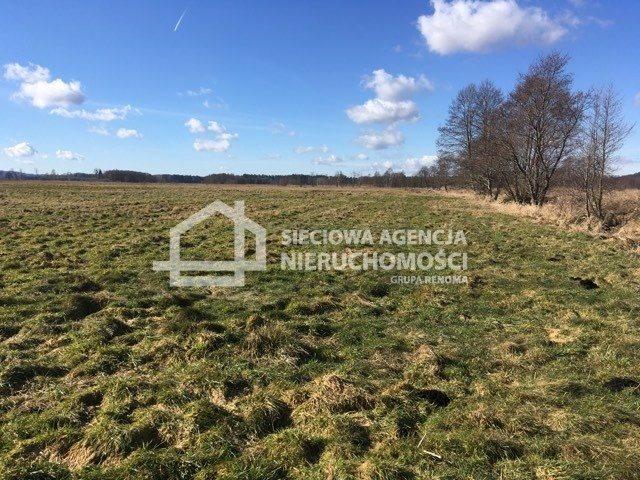 Działka rolna na sprzedaż Leśnice  40000m2 Foto 1