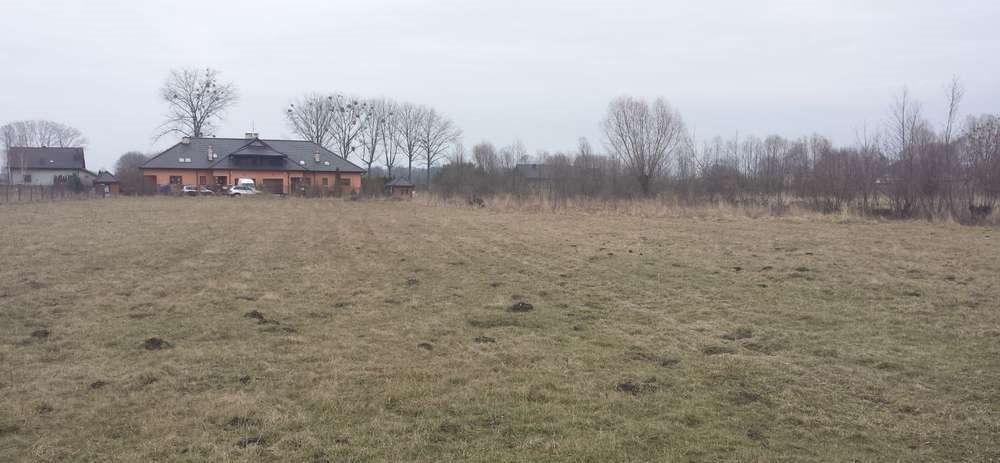 Działka siedliskowa na sprzedaż Skierniewice  34000m2 Foto 3