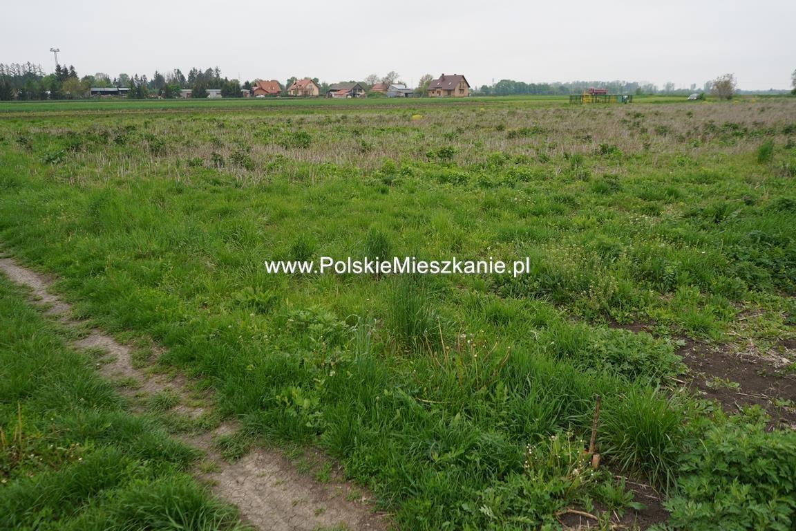 Działka rolna na sprzedaż Przemyśl, Krówniki  5500m2 Foto 10