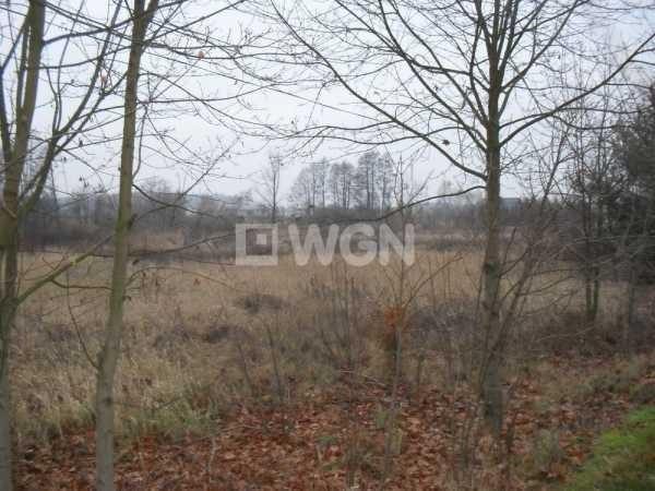 Działka inwestycyjna na sprzedaż Jerzmanowa, Głogowska  16647m2 Foto 5