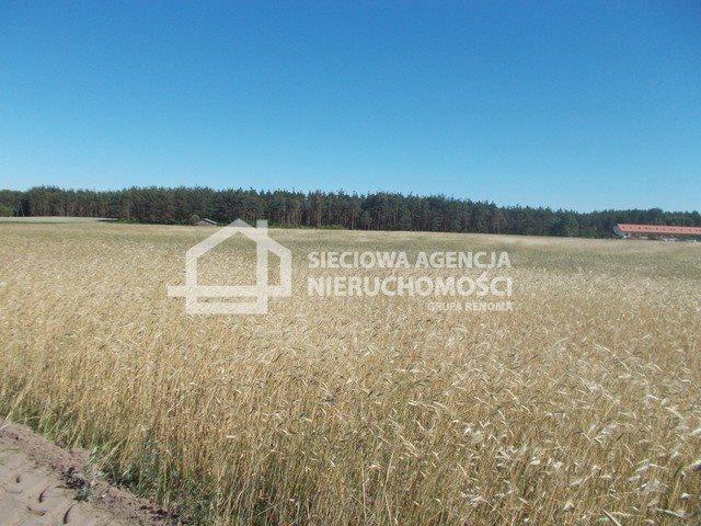 Działka inwestycyjna na sprzedaż Śliwice  14138m2 Foto 4