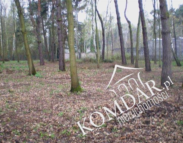 Działka budowlana na sprzedaż Brwinów, Brwinów  2609m2 Foto 6