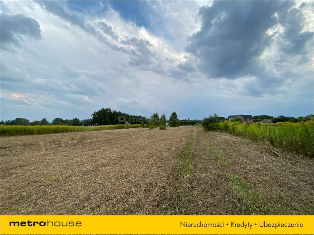 Działka rolna na sprzedaż Konstancin-Jeziorna, Konstancin-Jeziorna  3200m2 Foto 4