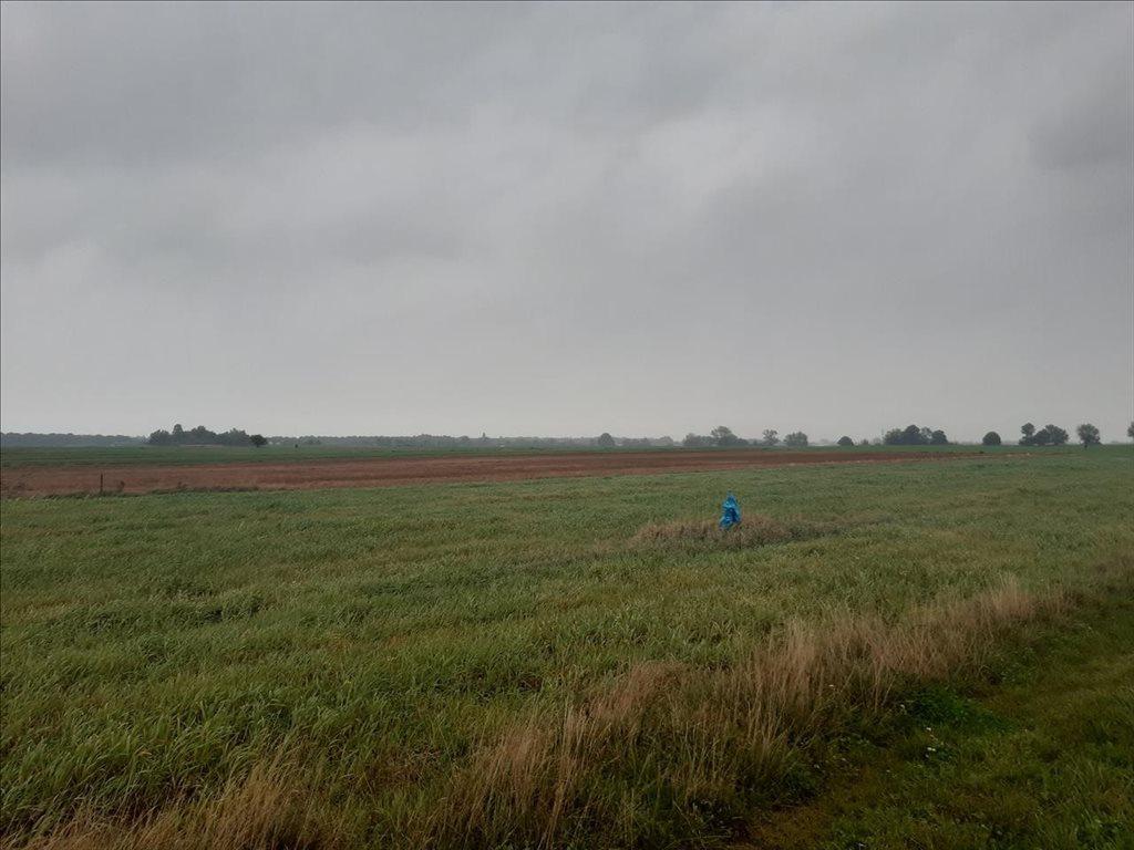 Działka rolna na sprzedaż Mielenko, Mielno  3020m2 Foto 4