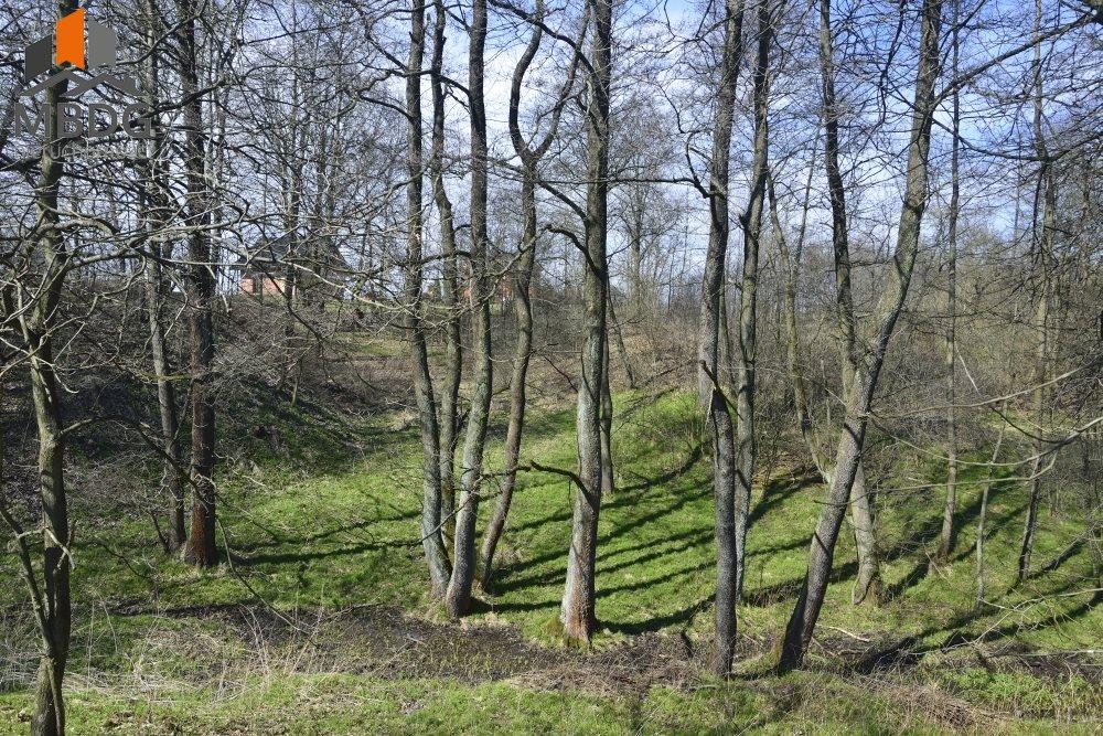 Działka siedliskowa na sprzedaż Brodła  14100m2 Foto 6
