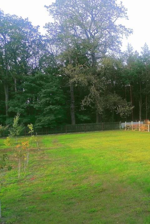 Dom na sprzedaż Leśna Woda  440m2 Foto 13