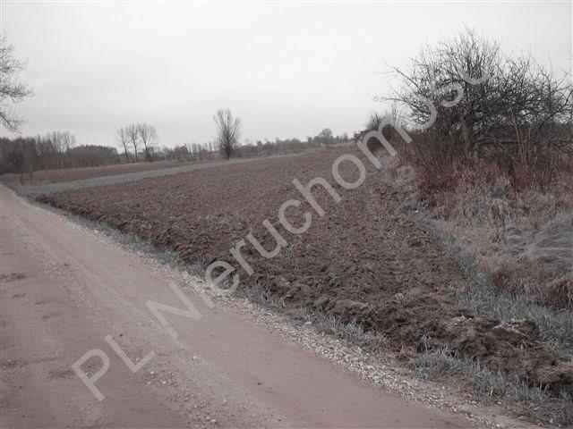 Działka rolna na sprzedaż Jastrzębnik  12730m2 Foto 2