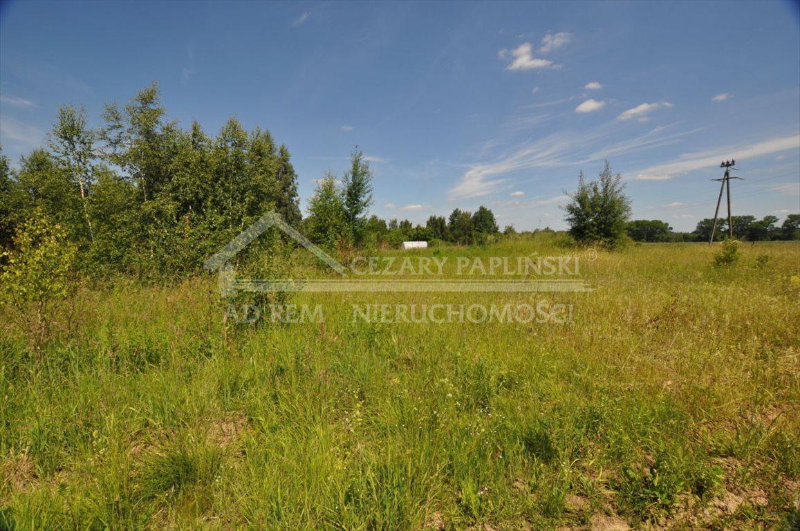 Działka rolna na sprzedaż Tomaszowice-Kolonia, Tomaszowice Kolonia  3000m2 Foto 1