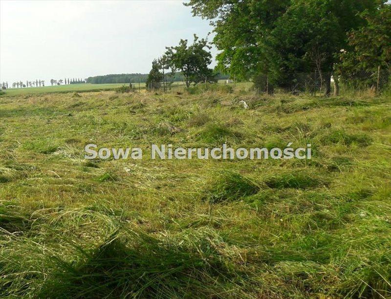 Działka budowlana na sprzedaż Świebodzice, Ciernie  1658m2 Foto 1