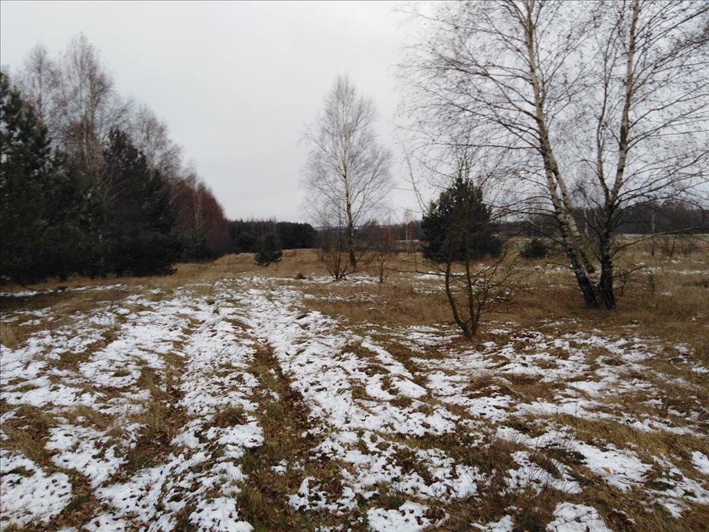 Działka siedliskowa na sprzedaż Stare Gałkowice, Kamieńsk  34200m2 Foto 2