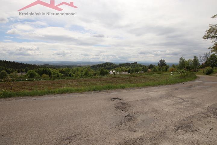 Działka rolna na sprzedaż Korczyna  3000m2 Foto 8