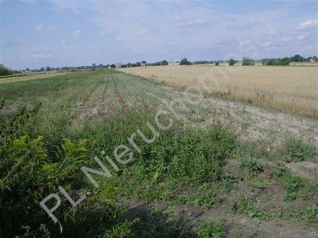 Działka rolna na sprzedaż Milęcin  15762m2 Foto 3