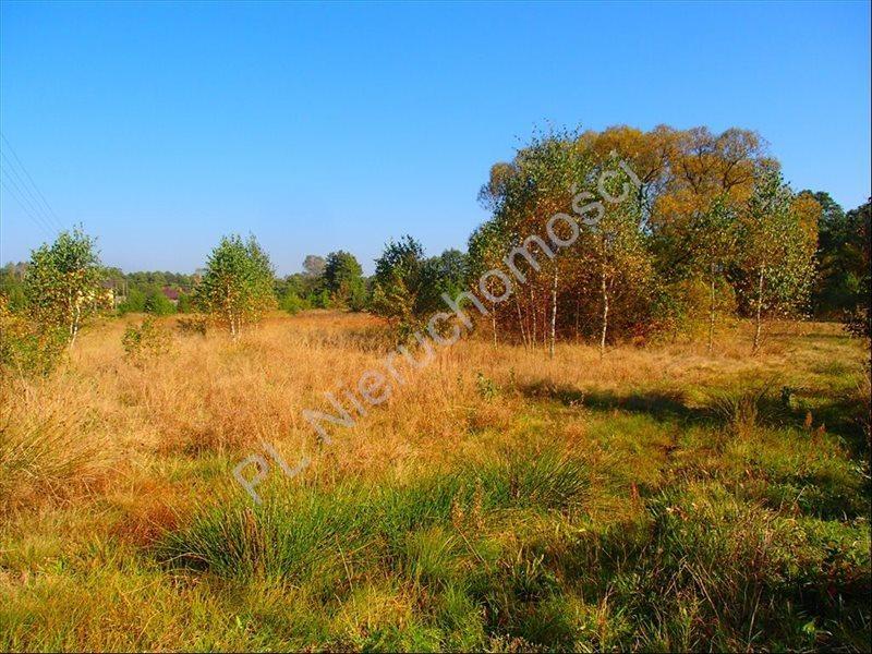 Działka rolna na sprzedaż Stanisławów  12800m2 Foto 3