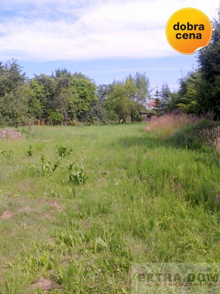 Działka inna na sprzedaż Nowogard  4277m2 Foto 1