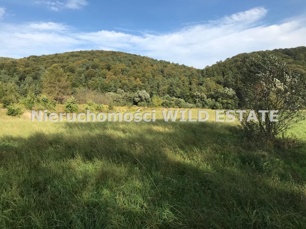 Działka rolna na sprzedaż Trepcza  5800m2 Foto 5