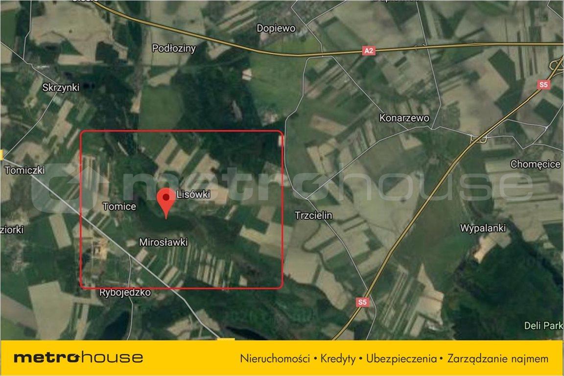 Działka rolna na sprzedaż Trzcielin, Dopiewo  44400m2 Foto 3