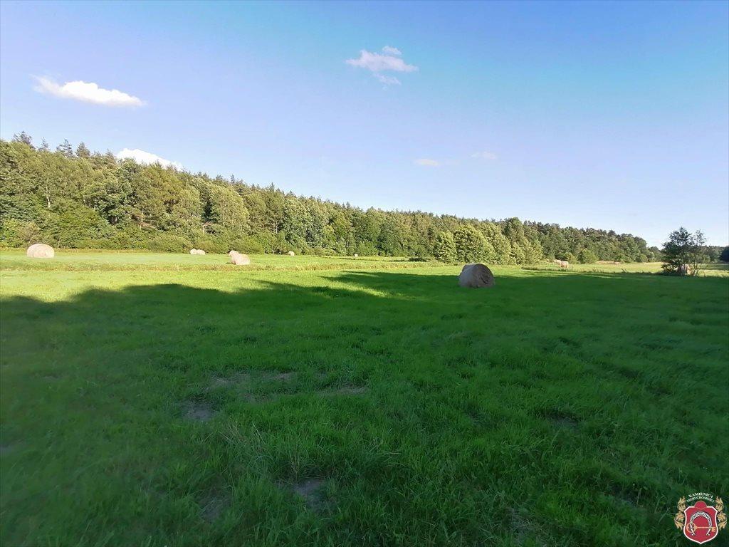 Działka rolna na sprzedaż Tawęcino  136800m2 Foto 1