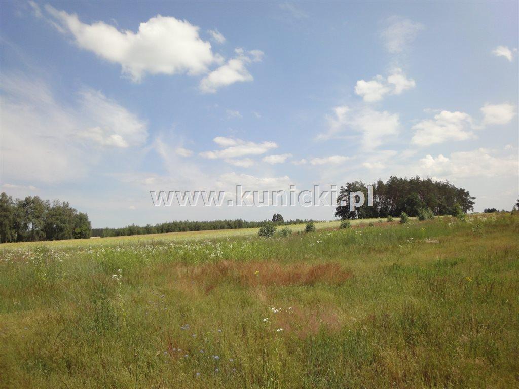 Działka budowlana na sprzedaż Przyborowice Górne  1250m2 Foto 2