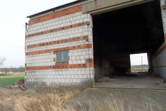 Działka budowlana na sprzedaż Olsza  12000m2 Foto 10