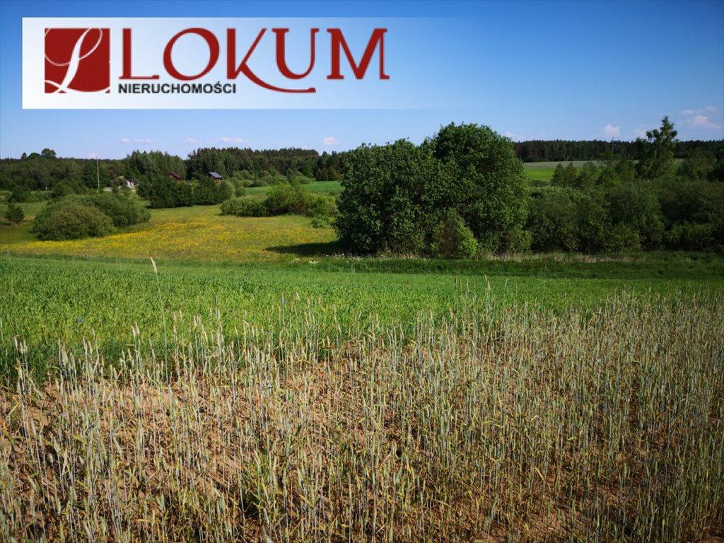Działka rolna na sprzedaż Nowy Wiec  72525m2 Foto 4