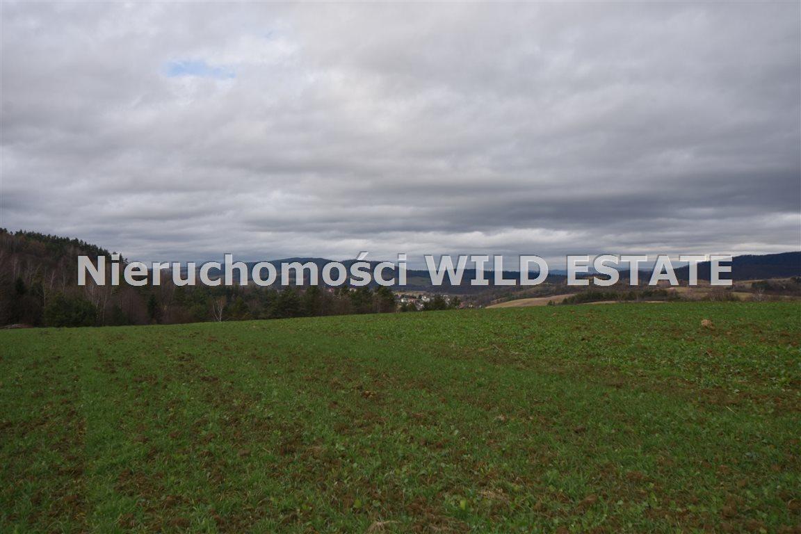 Działka rolna na sprzedaż Solina, Berezka  9520m2 Foto 11