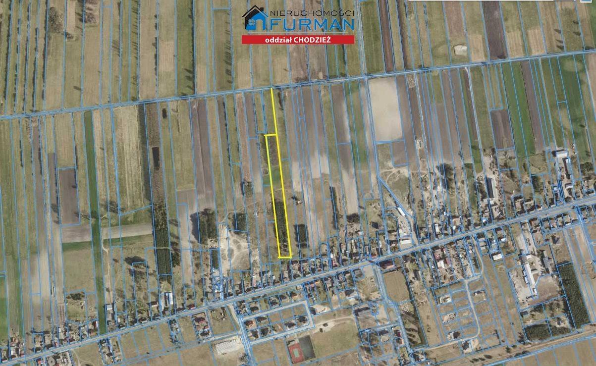 Działka rolna na sprzedaż Zacharzyn  9333m2 Foto 5