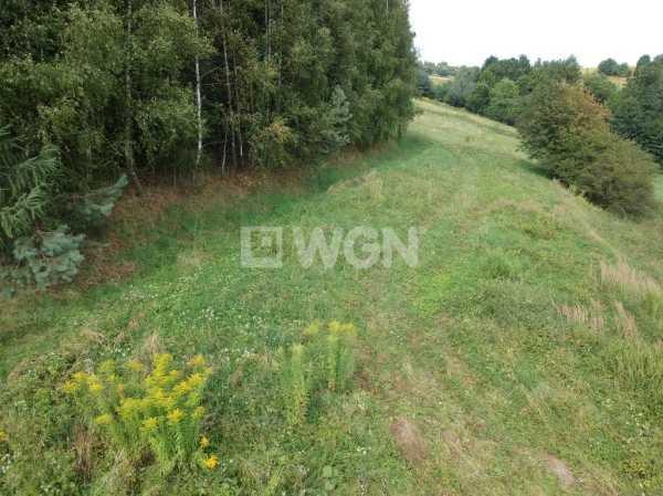 Działka rolna na sprzedaż Nowa Góra, Nowa Góra, Nowa Góra  800m2 Foto 4