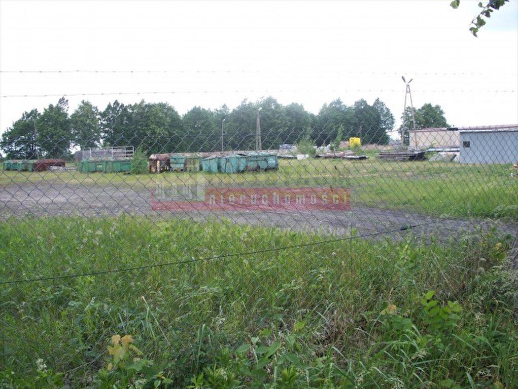 Działka inna na sprzedaż Kluczbork  20000m2 Foto 2